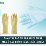 Găng tay cao su bao nhiêu tiền? Mua ở đâu chính hãng, chất lượng?