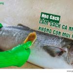 Học cách làm sạch cá nhanh, không lo mùi tanh đảm bảo an toàn