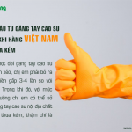 """Sao phải """"đầu tư"""" găng tay cao su Hàn quốc khi hàng Việt chẳng thua kém"""