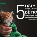 5 lưu ý khi vệ sinh thú cưng để tránh rước bệnh vào người