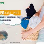 5 mẹo giặt, phơi quần áo không bị mùi hôi khó chịu vào mùa mưa
