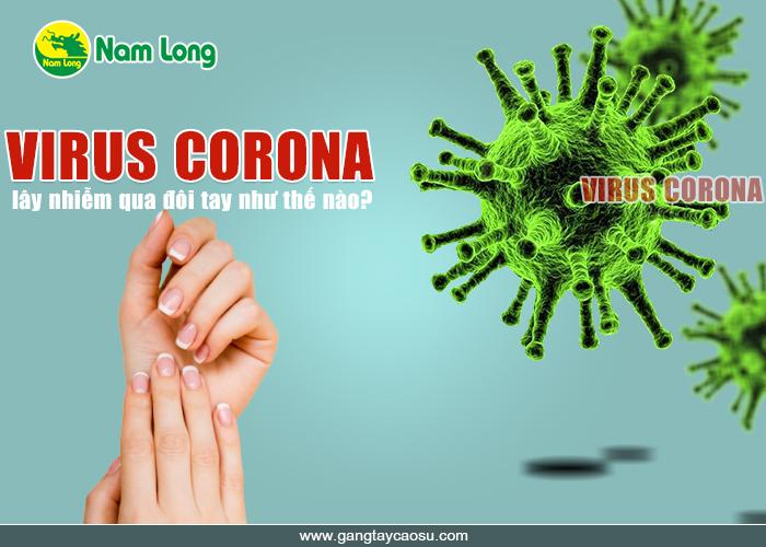 virus corona lây qua đường tay thế nào