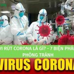 Vi rút Corona là gì? 7 biện pháp phòng tránh vi rút Corona