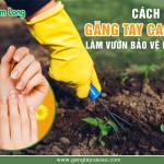 6 yêu cầu cần có của một đôi găng tay cao su làm vườn chuẩn