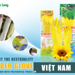 Find out the best quality rubber glove manufacturer with preferential prices in Vietnam