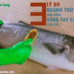 3 lý do ngành thủy sản nên dùng găng tay cao su loại dài