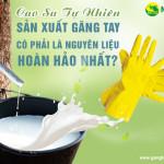 Cao su tự nhiên sản xuất găng tay có phải là nguyên liệu hoàn hảo nhất?