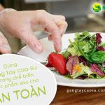 Sử dụng găng tay cao su trong chế biến thực phẩm sao cho an toàn?
