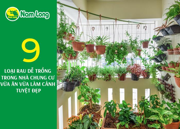 9 loại rau dễ trồng - 01