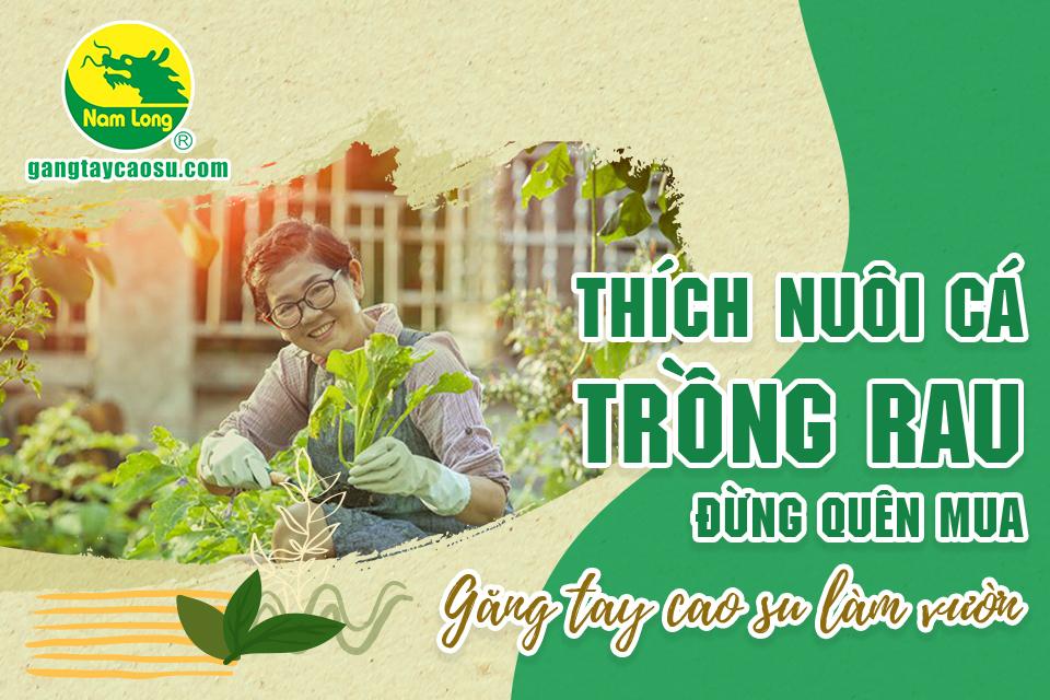 Thích nuôi cá trồng rau, đừng quên mua găng tay cao su làm vườn