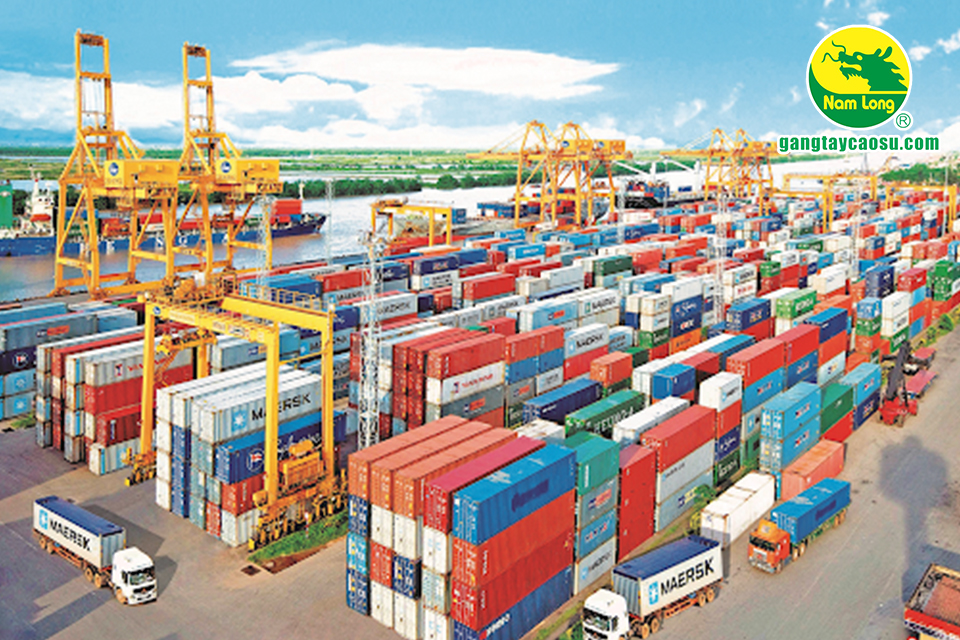 Nam Long là công ty chuyên xuất khẩu găng tay cao su sang nhiều nước
