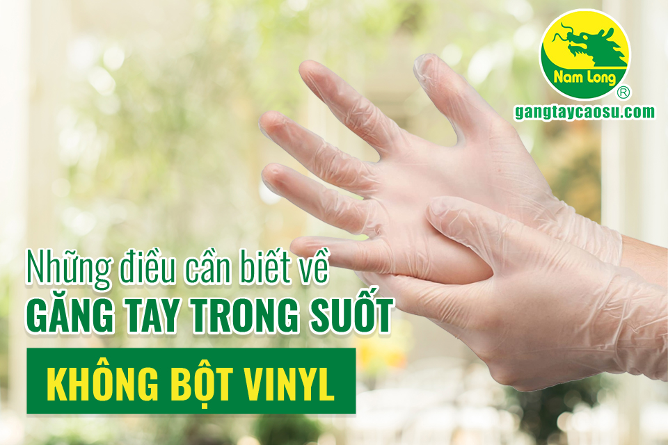 Những điều cần biết về găng tay trong suốt không bột Vinyl